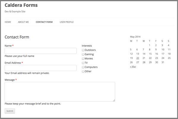 Caldera_Forms_voorbeeld